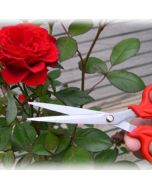 Flower Scissor Red - Wonderland
