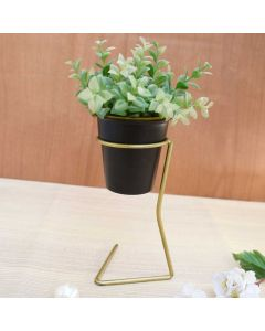 Glass Stand Shaped Planter - Color Palatte