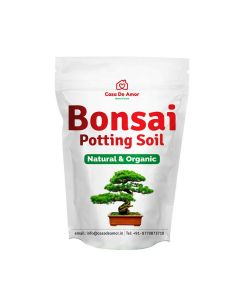 Ready to Use Bonsai Potting Soil (2 kg) - Casa De Amor