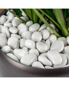 Decorative White Small Pebbles (2 kg) - Casa De Amor