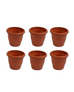 Plastic 8-inch Planters (Pack of 6) - Cocogarden