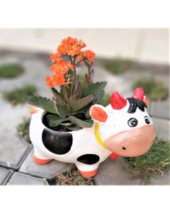 Cow Pot - Bloom Bagicha