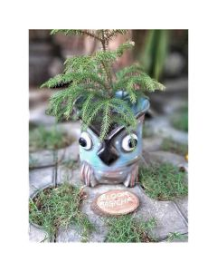 Owl Planter - Bloom Bagicha