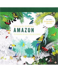 Amazon Themed colouring Book - IBD