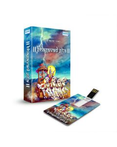Bhagavad Gita - 320 Kbps MP3 Audio (Hindi 8GB Music Card) - Shemaroo