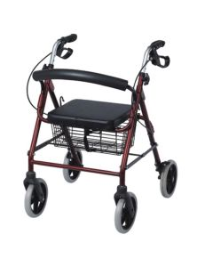 Rollator With Seat And Wheels for Children (Sc5001) - Entros