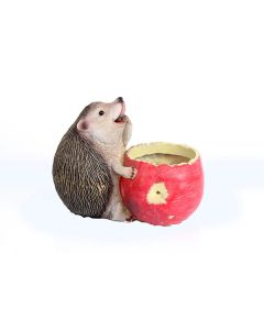 Fat Hedgehog Flower Pot - Wonderland