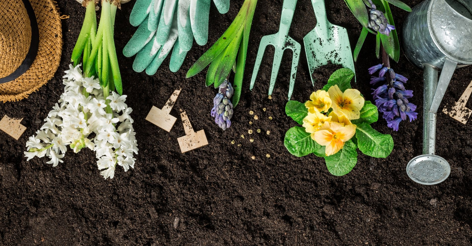 13 Essential Home Gardening Tools for Seniors