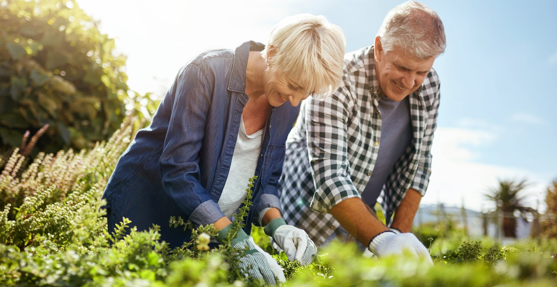 8 Fun & Productive Hobbies to Cultivate After Retirement